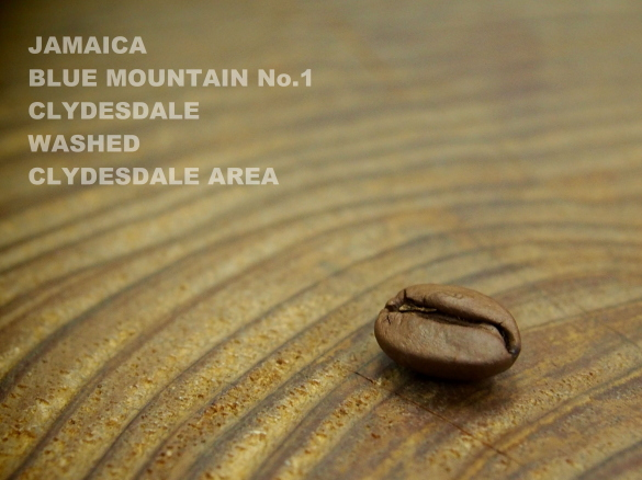 jamaica blue mountain no1 clydsedale
