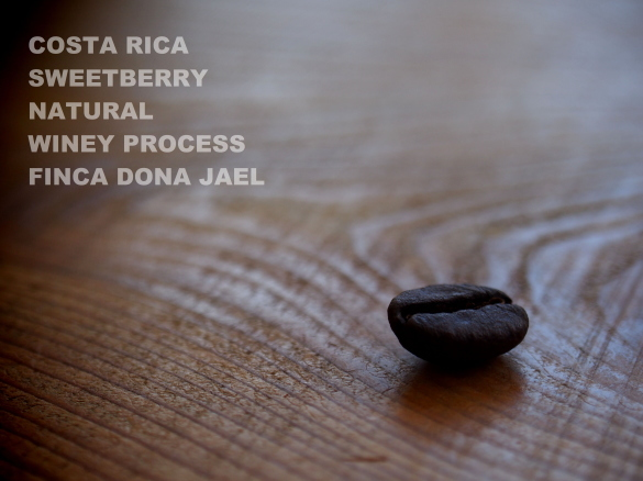 costa rica sweetberry natural