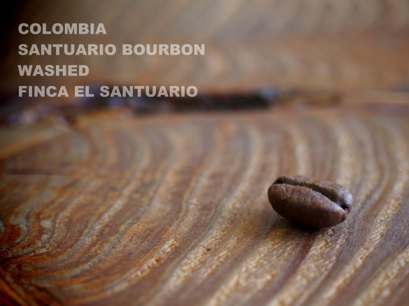 colombia santuario bourbon washed