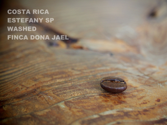 costa rica estefany sp washed