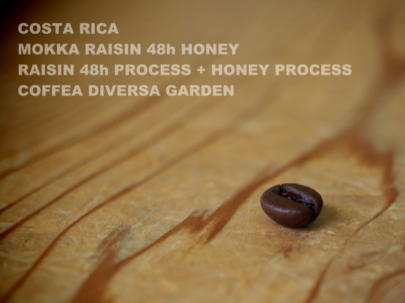 costarica mokka raisin 48h honey raisin 48h process + honey process coffea diversa garden