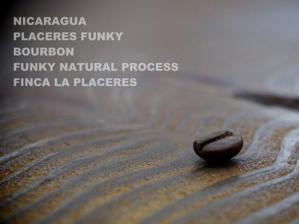 nicaragua placeres funky bourbon funky natural process finca la placeres